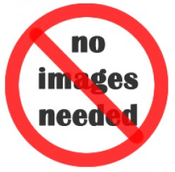 Warning! Warning! There are no images here!