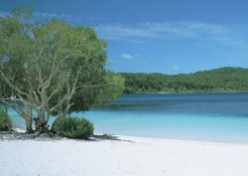 Have a dream holiday on Fraser Island, Australia