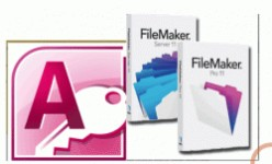 Which database application is best for you: FileMaker Pro or MS Access?