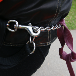 Chain Leash around waist with Nylon leash looped
