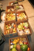 SECRET FREEGAN: Rescuing Food to Feed Homeless