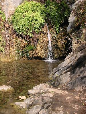 Temescal Canyon pic