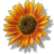 WorldTraveling profile image