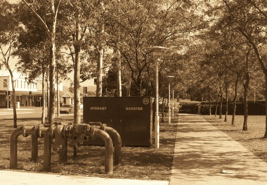 This walkway looks a bit lonely in sepia tone.