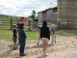 Touring the farm (photo by Sandra Wilson)
