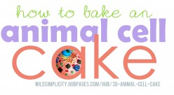 How to Make an Animal Cell Cake