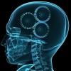 thepsychologyst profile image