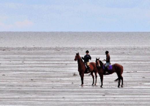 Horseback riding at Delta BC