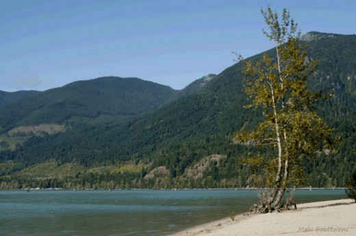 The beach at Harrison River is one of my favorite spots. The white sand and the blue of the water make of it a quiet and peaceful place to spend the day or camp at one of the various RV parks and campgrounds