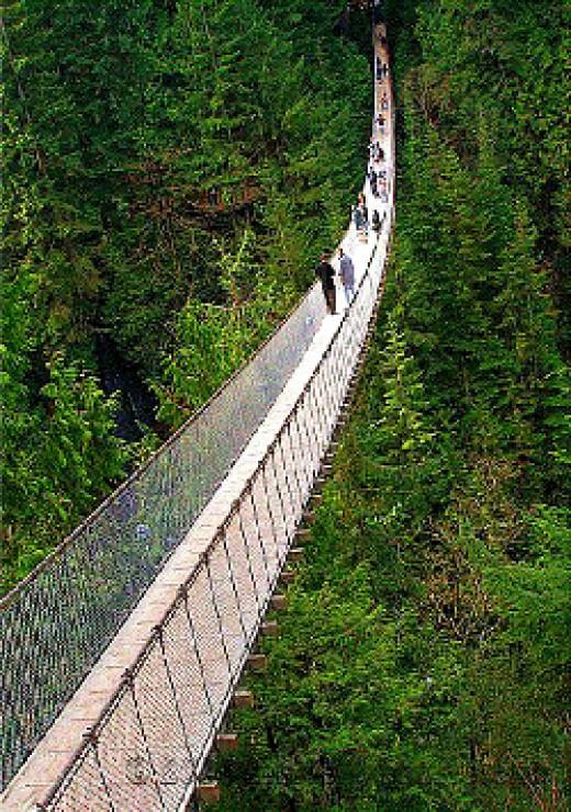 Capilano Susension Bridge by Malu Couttolenc