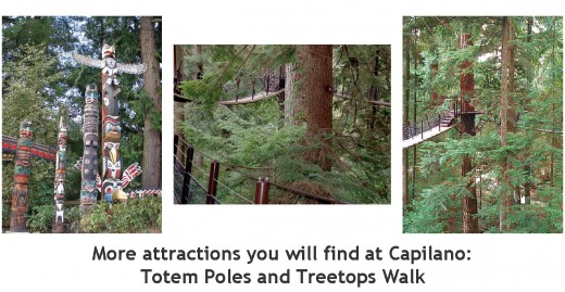 Attractions at Capilano: Photos Malu Couttolenc