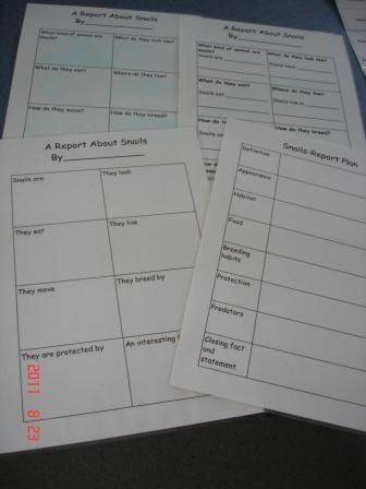 Four different levels of graphic organisers to allow all students to access the task.