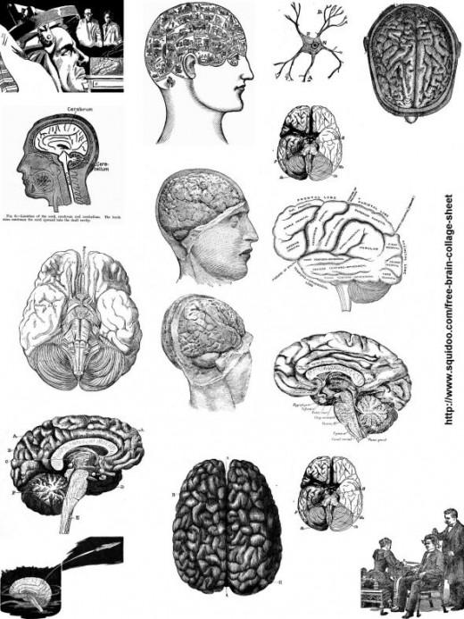 Free Brain Collage Sheet