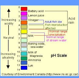 pH diagram