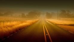 7 Roads to Alexa Rank Improvement and SEO Tips
