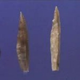Flint Spear Heads