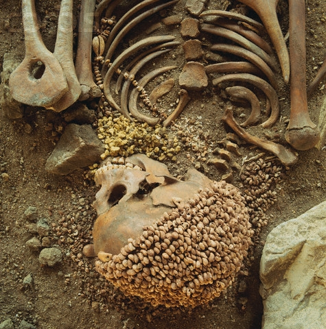 The skeleton of an 18 year old male wears a shell hat and necklace in a burial at the Mesolithic site of Arene Candide in Italy.