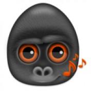 newmorningdews profile image