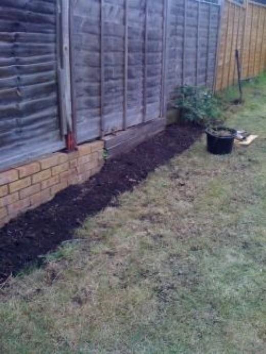 Garden border step three