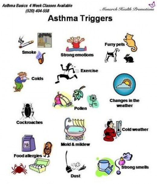 Common Asthma and Allergy Triggers