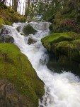 A stream on Dartmoor