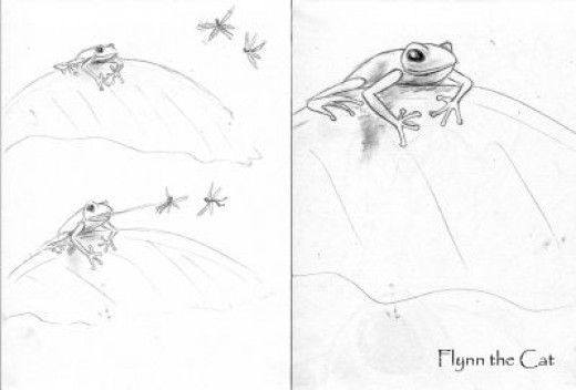 Tree Frog: No Fairies in the Jungle