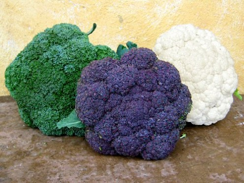 A Violet Queen is not Broccoli, Its Cauliflower