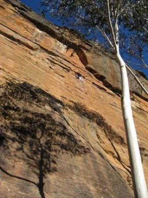 Rock Climbing at Centenial Glen