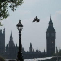 Photo from London