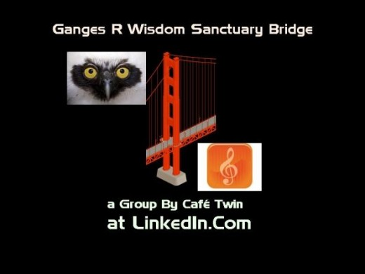Ganges Wisdom Santuary Bridge