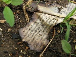 An almost totally-burned magazine article I found in the garden one day, much like my writing career when I had writer's block.