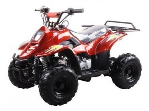 "110cc Four Wheeler 6"" Tires"