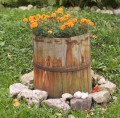 How to Plant a Cheap Container Garden