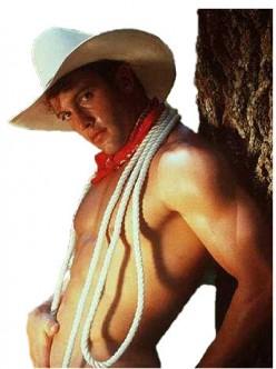 Save a horse, ride a cowboy (sexy)