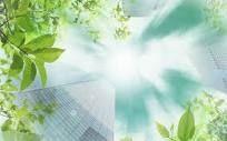 Photosynthesis Essay