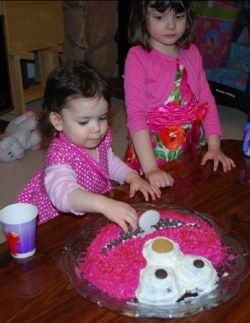 My daughter's 2nd birthday party
