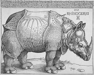The official logo adopted by the Rhinocerous Party of Canada (Albrecht Durer, 1515 - photo courtesy of the British Museum)