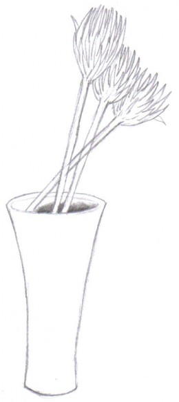 The drawing of the vase with the dried flowers.