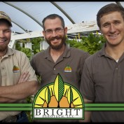 BrightAgrotech profile image
