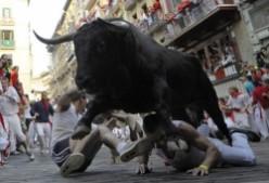 The Running of the Bulls/The festival of San Fermín