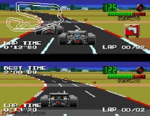 Formula One World Championship has a split screen two player mode.