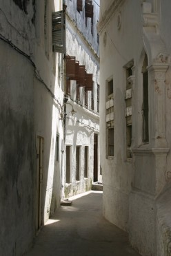 White washed buildings allign the streets and alleyways.