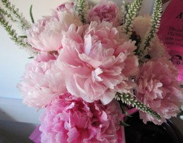 More beautiful peonies