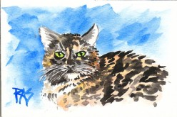 Tips for Drawing and Painting Cats