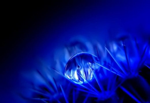waterdrop photography by Arnaud S.