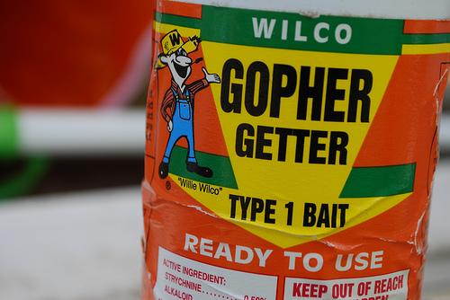 Gopher Poison