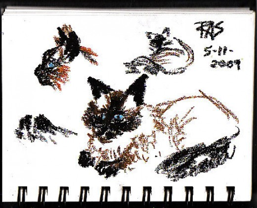 Fast gesture drawings of my cat Ari, done in oil pastels on sketchbook paper while he was changing pose. Robert A. Sloan.