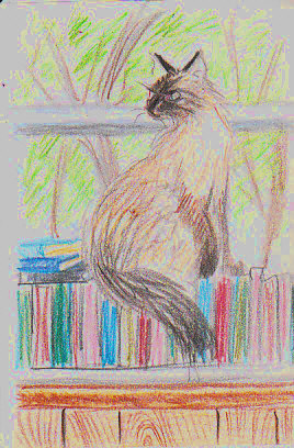 Ari was sitting in the window when I did this colored pencil sketch -- in this and two or three other poses. Robert A. Sloan