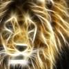 claritastic profile image