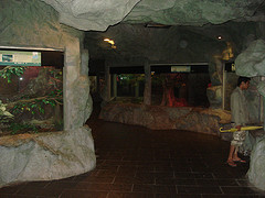 Part of the Reptile House